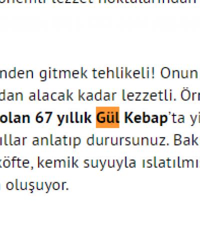Gül kebap Mehmet Yaşin yazısı
